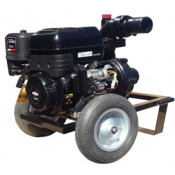 Motopompa DWP 420 BS3
