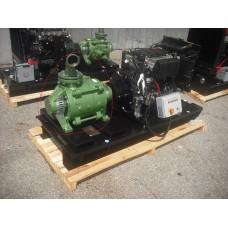 Motor pump Lombardini LDW 2204 SKM 80/2